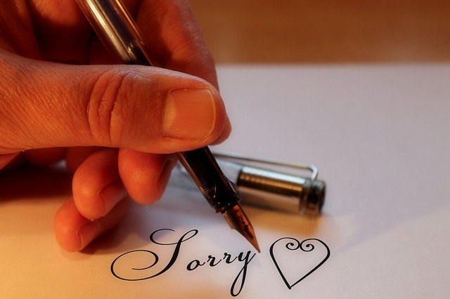 napowrimo-apology-sorry